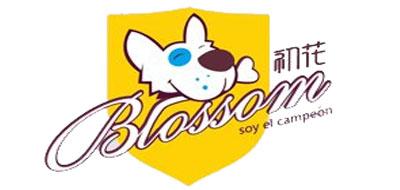 BLOSSOM是什么牌子_初花品牌怎么样?
