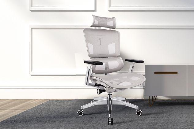 ergoup有谱人体工学椅适合久坐吗?调节的地方多不多?-1