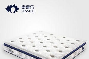 床垫品牌排行,哪个牌子的床垫更好?-1
