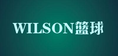 WILSON篮球是什么牌子_WILSON篮球品牌怎么样?