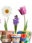 朗阆陶瓷花盆