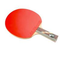 乒乓球拍哪个牌子好_2020乒乓球拍十大品牌-百强网