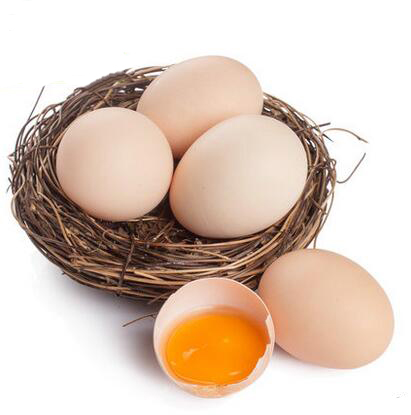 2020鸡蛋十大排行榜_一线品牌鸡蛋10强-百强网